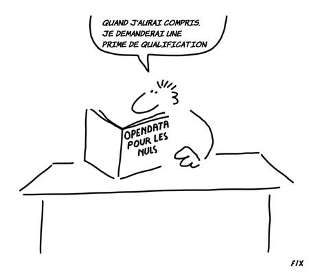 """Il y a un vrai besoin d'un livre """"Open Data pour les Nuls"""". Qui veut l'écrire?"""